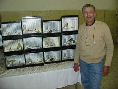 selling class bird breeder association